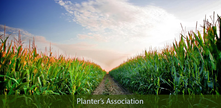 Showtime bags an order for another conference app from planter's association